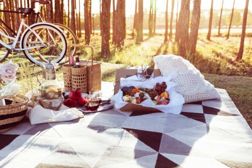 Romantic picnic scene in the woods with bicycles.