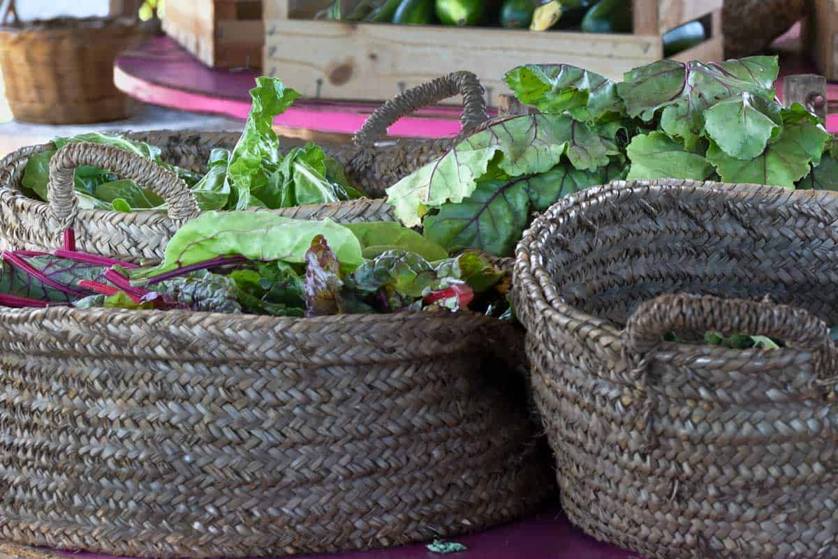 Rustic baskets with fresh leaves of Swiss chard.