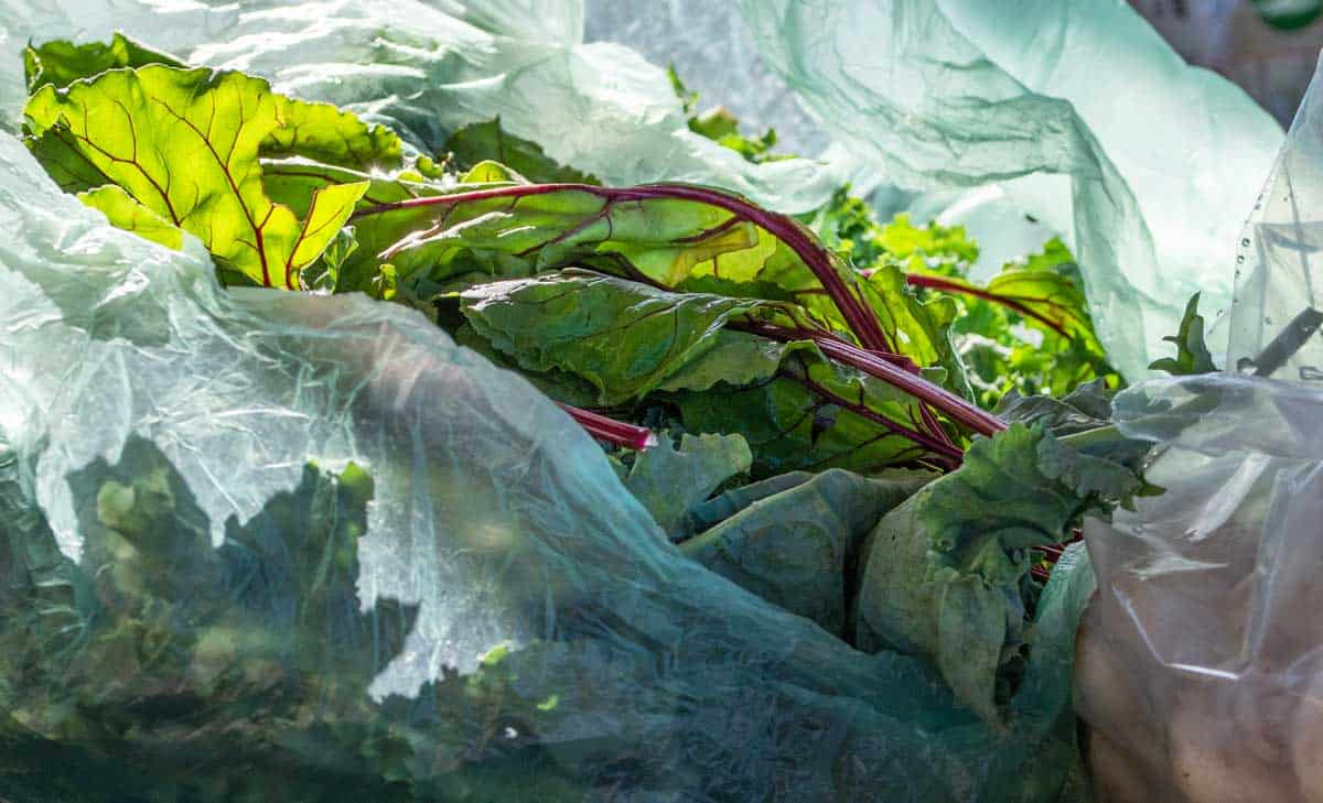 Swiss chard greens in a bag.