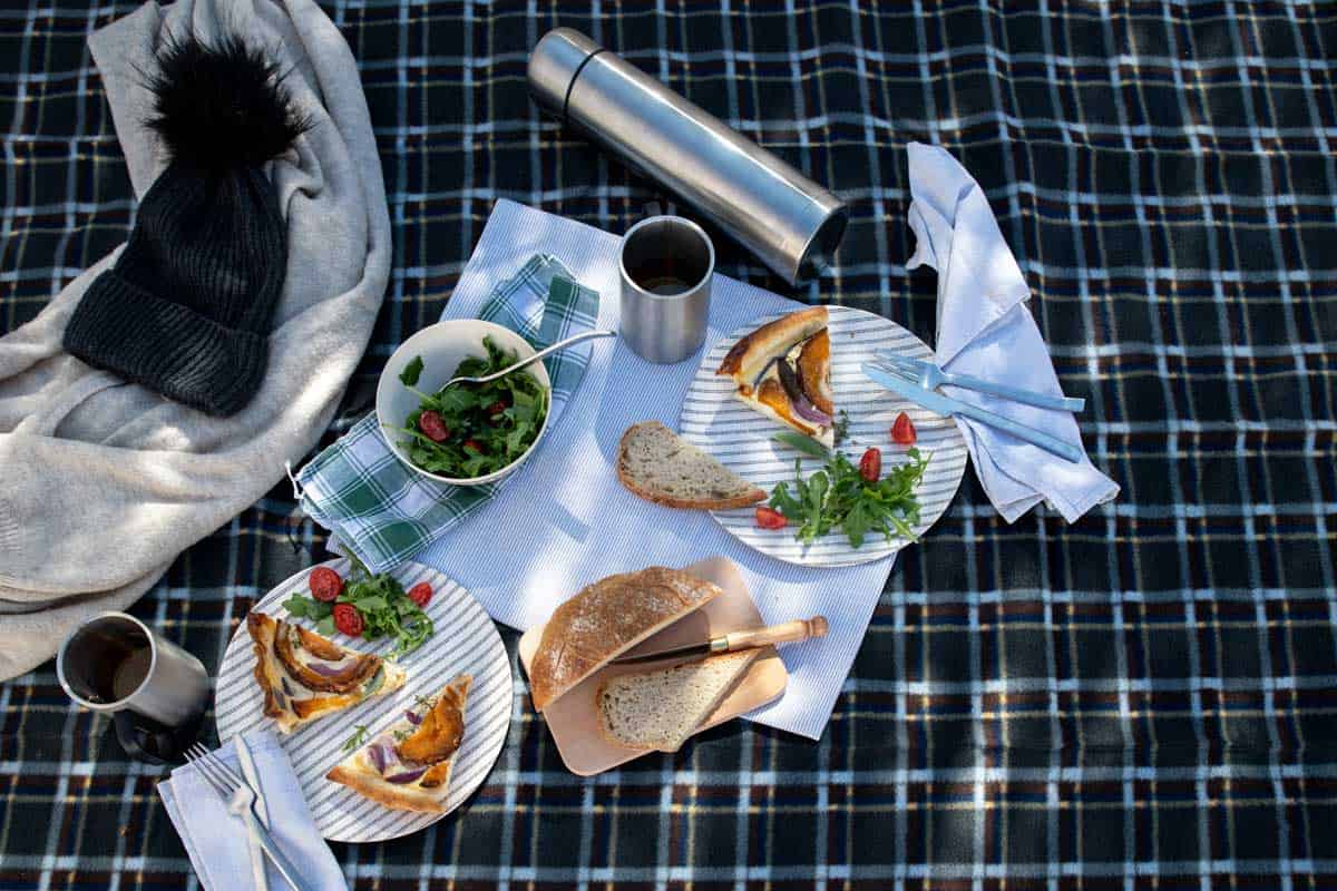 Picnic spread on winter check blanket.